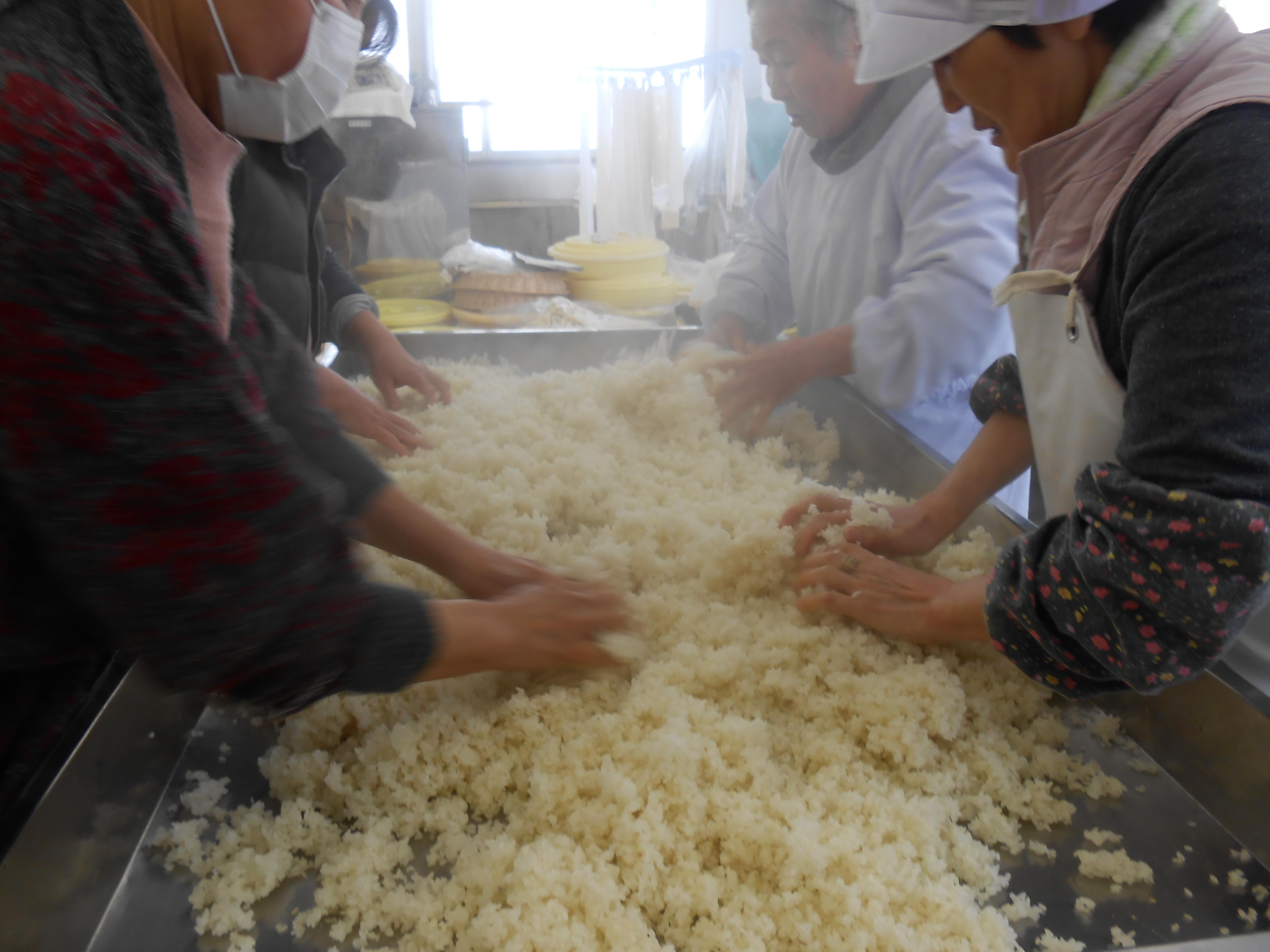 味噌とカステラ作り体験